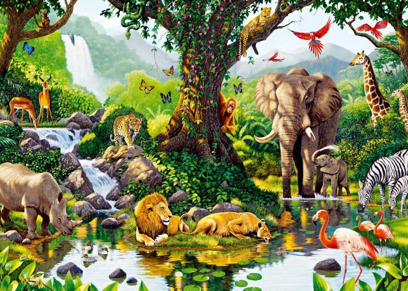 9200 Koleksi Contoh Gambar Ekosistem Hewan HD Terbaru